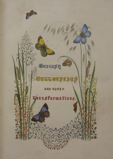 J.O. Westwood esq. - British Butterflies And Their Transformations - 1857