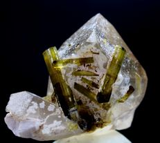 Natural Terminated Green Tourmaline Crystals on Damage free Smoky Quartz  - 43 x 48 x 30mm - 73gm