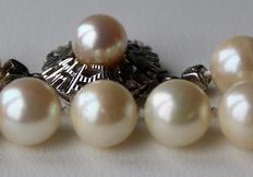 Long necklace with genuine see/salt pearls ca. 8-8.3 mm from the Japanese Sea and White gold clasp with pearl. Beautiful condition.