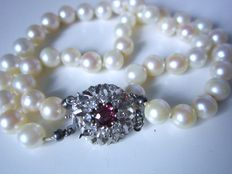 2 strand Akoya cultivated pearl bracelet with large clasp with ruby and diamonds made of 585 white gold!