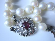 2 strand Akoya pearl bracelet with large clasp with ruby and diamonds made of 585 white gold!