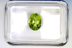 Peridot - 1.20 ct - No reserve price