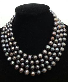 XL necklace (196 cm) composed of large grey freshwater cultured pearls - No reserve price