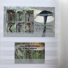 Mushroom theme – Topical collection in stock book