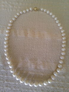 Akoya Pearl Necklace (Japanese pearls)