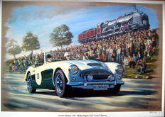 Austin Healey #38 - Mille Miglia 1957 (Last Edition) - Art Print HV Silk MC 250 g/m2