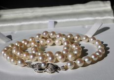 Antique Necklace with genuine salt water pearls Ø6,4mm to Ø6,7mm with silver pink reflections.