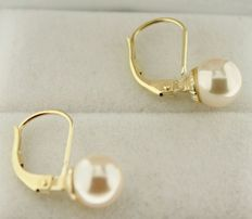 Yellow gold 14 kt earrings set with a pearl of 7 mm