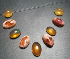 Lot of Mexican Fire Opal - 24.26 ct. (9)