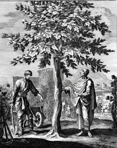 Monnogram I.L. & C.W. - Under The Tree Ficus Carica - 18th century