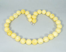 Baltic Amber necklace butterscotch, white butter color, 101 gram