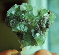 Very lovely small apatite of emerald green colour with chalcopyrite, mica and siderite - 6x5x3 cm - 120 gm