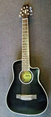 Motion Traveller guitar, electro-acoustic with 2-band Shadow equaliser