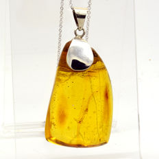 Large pendant with 925 silver chain and amber with 1 small mosquito