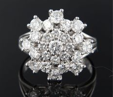 14 kt white gold entourage ring set with 25 brilliant cut diamonds, approximately 2.59 carat in total