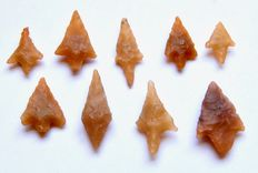 9 Neolithic arrowheads from Algeria - 18 - 30 mm (9)