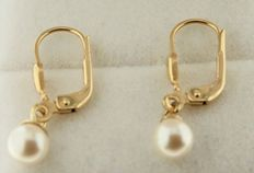 14 kt yellow gold earrings, set with 5 mm pearls
