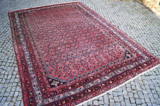 Persian Hamadan Patina Colors  320x225cm -hand knotted