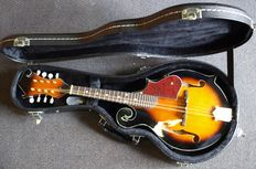 New F-style electro-acoustic mandolin, Transparent Vintage Sunburst with solid shaped case