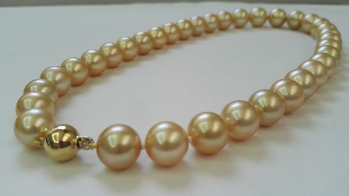 Necklace in golden colour, natural Australian Pearls (South Sea Pearls) 11–13.50 mm