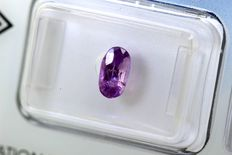 Color Change Sapphire - 1.01 ct - Pink Purple