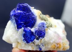 Blue Lazurite crystals with Golden Pyrite &  Phlogopite  - 87 x 50 x 52 mm - 327 Gram