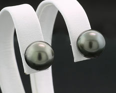 A pair of anthracite grey Tahiti pearl earrings – 10 mm – 900 platinum – no reserve price