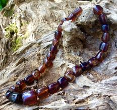 Multicolur Amber beads necklace bluish, cherry, cognac etc., 86.0 grams weight