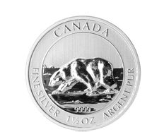 Canada - Royal Canadian Mint - 8 CAD - 1.5 oz 999 Silver - Silver Coin Polar Bear 2013