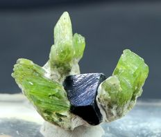 Attractive Terminated Peridot Crystals Cluster with Magnetite crystal -  43 x 31 x 35 mm - 33 Gram
