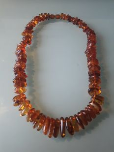 Natural Baltic Pine Amber Necklace - 68 g.