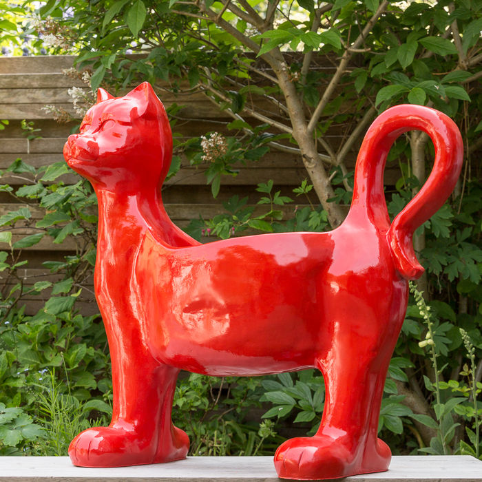 Big red cat as a planter