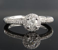 14 kt white gold ring set with 0.50 ct solitaire diamond and 86 diamonds all around, ring size 18 (56)