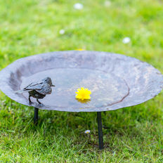 Beautiful large metal water bowl with a bird on it.
