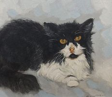 Jos van Dijk (1913-2000) - Pasha the cat.