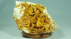 Wulfenite on lime - 8 x 5.5 x 6 cm - 309 grams