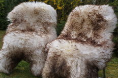 Lot consisting of 2 XXL mouflon mottled and very thick lambskins/sheepskins.