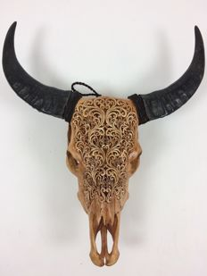 Hand-carved water buffalo skull - Bali - Indonesia