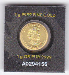 Canada - 50 cents 2015 'Maple Leaf' - gold