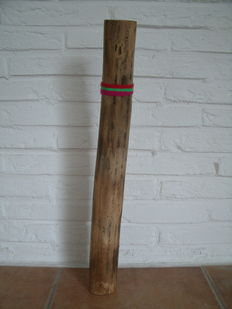 Cactus  Rain stick  percussion instrument