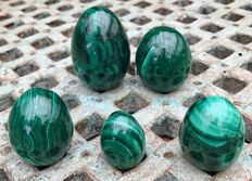 Finely patterned Congolese Malachite eggs - 3.4 to 6.3 cm - 655gm  (5)