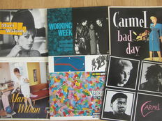 Lot Of 23 Albums & 12 Inches By 80s Bands Carmel, Working Week & Mari Wilson & The Wilsations