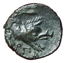Greek Antiquity - Italy, Northern Apulia, Arpi - AE (14,5mm; 3,51g.), c. 325-275 BC - Head Zeus / Forepart of boar - HN Italy 643