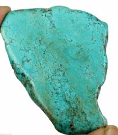 Natural Turquoise - 60 x 49 x 6 mm - 177.45 ct