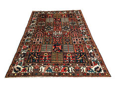 Superb Persian carpet: Bakhtiar of 305 x 215 cm, circa 1930!!