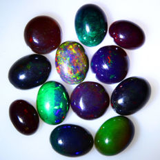 Multicolor Opals - Lot - 20.715ct - 24pcs