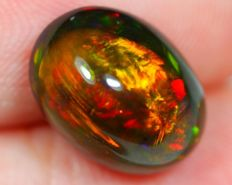 Rainbow Multi-color Play Solid Smoked Opal- 11.8 x 8.7 x 6.3mm -3.21ct