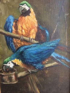 Unknown artist - Two macaws