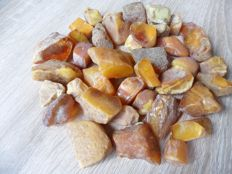 Butterscotch Baltic amber collection 12 to 40 mm, 1,5 to 8 gr. Total weight 129 gram.
