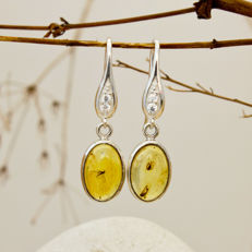 Lovely Silver, Cubic Zirconia And Baltic Amber Earrings With Insects 34x9x5mm